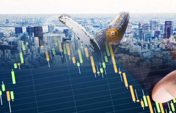 Are Whales Dumping Bitcoin In Large Amounts Driving The BTC Price Down?