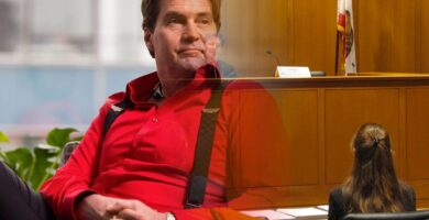 Craig Wright's Ex-Wife Defrauded The Court By Lying Under Oath Claims Kleiman Lawyers