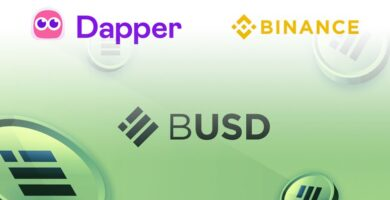 Dapper Labs And Binance Partner to Integrate BUSD Stablecoin to the Flow Blockchain