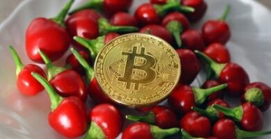 Just Eat Takeaway Partners with BitPay to Provide Bitcoin Payment Option to Its Customers in France