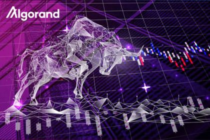 Algorand (ALGO) Sees Price Boost Following Crypto Bull Run and Recent Project Developments 