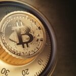 Bitcoin 'Potential Store of Value' under Scrutiny as Its Volatility Termed Extremely High